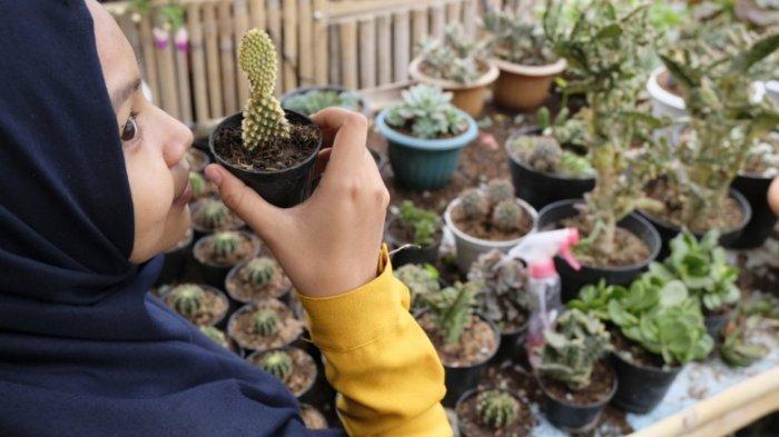 Kaktus Ternyata Bisa Dimakan dan Punya Nilai Nutrisi Tinggi, Begini Cara Mengonsumsinya