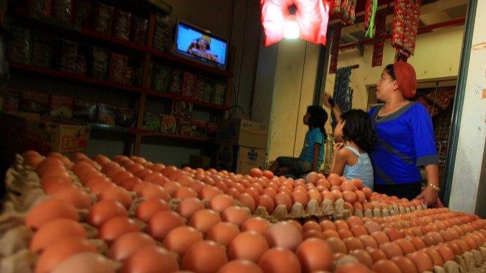 Cara Memilih Telur yang Segar, Jangan Sampai Salah Beli
