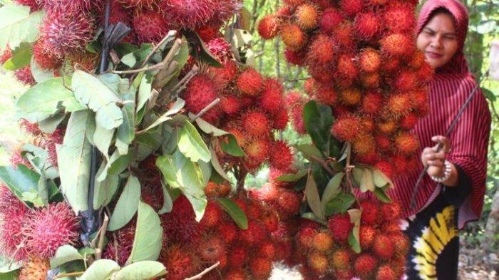 Jajal Kuliner Main Course dari Buah Rambutan, Penasaran Rasanya Gimana