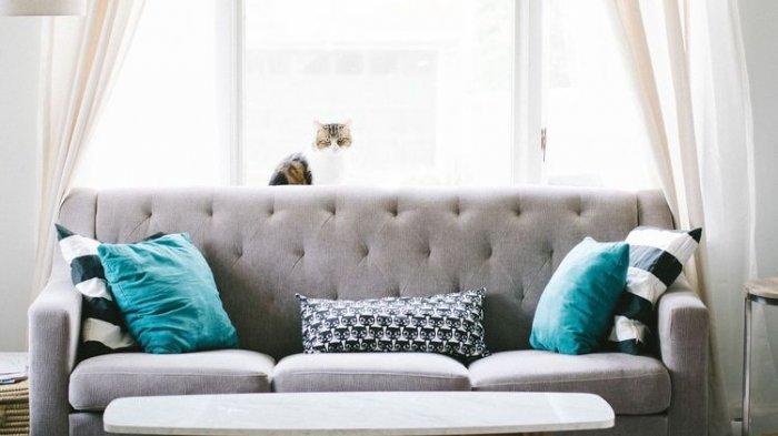4 Tips yang Harus Diperhatikan Sebelum Membeli Sofa