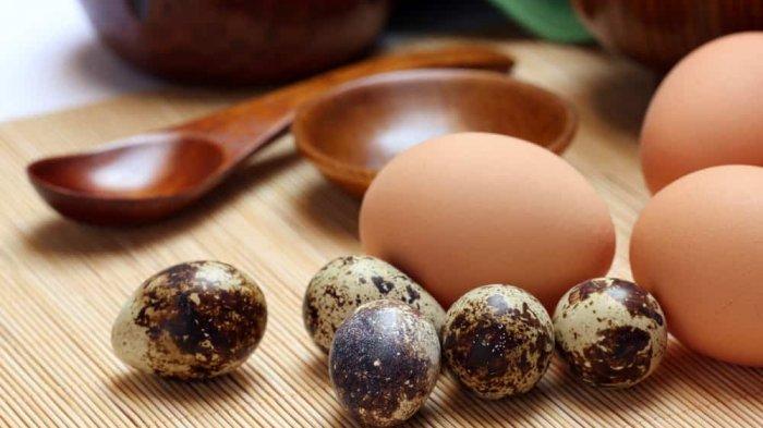 Telur Ayam dan Puyuh, Punya Kandungan Nutrisi yang Sama Tapi Mana yang Lebih Sehat?