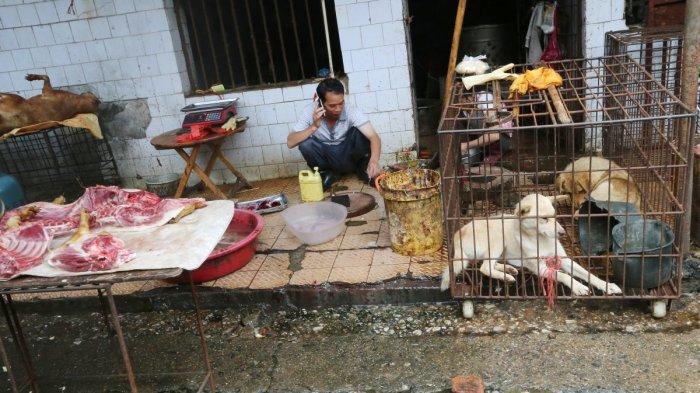 Kuliner Ekstrem dari Pasar Wuhan Diduga Menjadi Sumber Virus Corona
