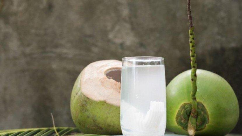 Kandungan Nutrisinya Melimpah, Air Kelapa Lebih Baik dari Minuman Berenergi