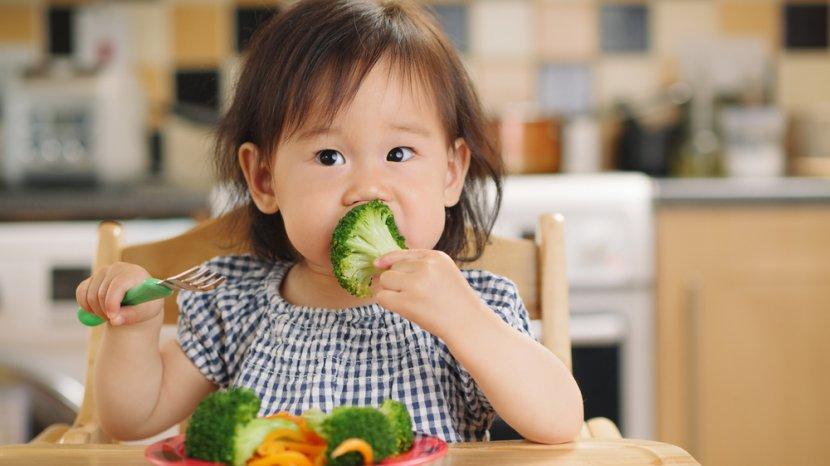 Hati-hati Memilih Makanan untuk Anak, Karena Mempengaruhi Perilakunya