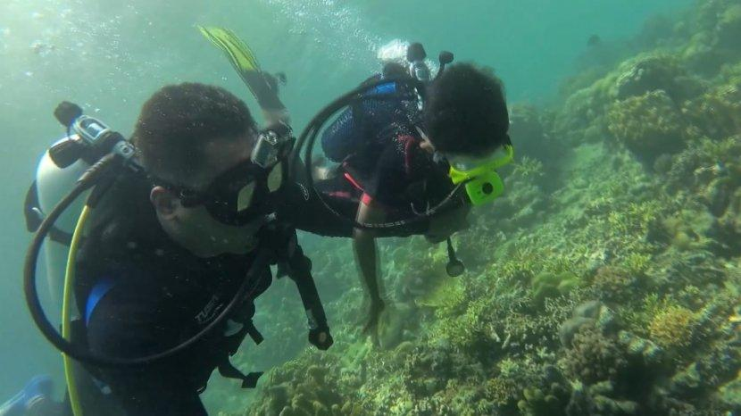 18 Tips untuk Pemula yang Ingin Belajar Menyelam
