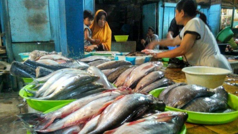 Bagaimana Cara Mengilangkan Bau Lumpur Ikan Air Tawar? Ikuti 4 Trik Ini