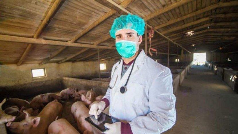 4 Risiko Makan Daging Babi Bagi Kesehatan yang Perlu Diketahui