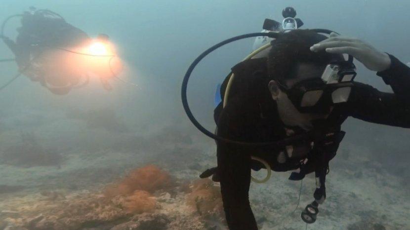 5 Bahaya Scuba Diving yang Bisa Menyebabkan Kematian
