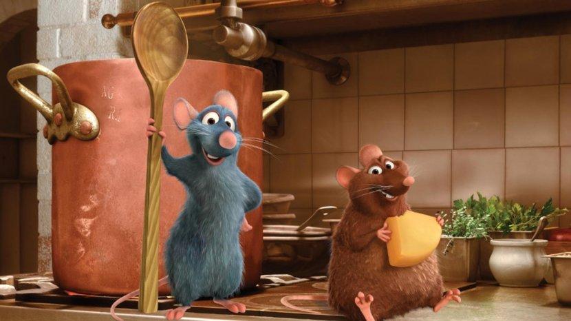 5 Tips Mencegah Tikus Bersarang di Dapur