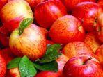 buah-apel-2.jpg