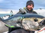tuna-bluefin-23.jpg