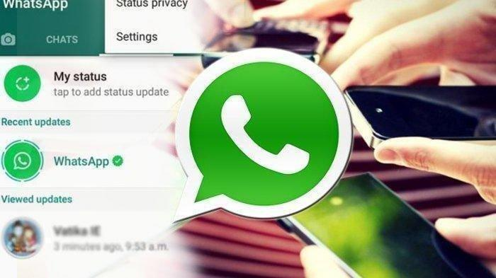 Cara Lihat Foto Profil Kontak WhatsApp yang Diblokir