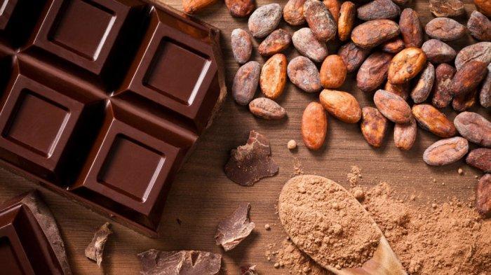 Makan Cokelat Membuat Otak Jadi Lebih Cerdas? Ini Faktanya
