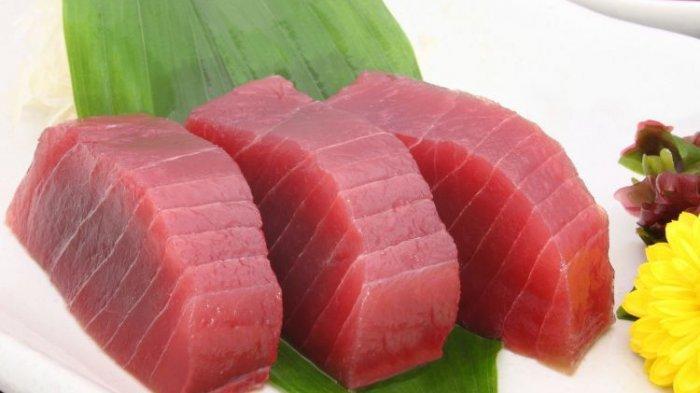 Sejarah Tuna Bluefin: Makanan Kucing hingga Berharga Miliaran Rupiah
