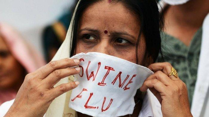 Tahun 2014, Flu Babi Tewaskan 1.500 Orang di India