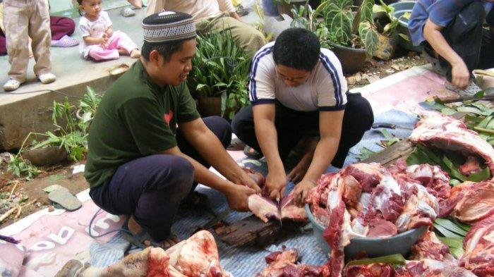 Tata Cara Pemotongan Hewan Kurban Agar Aman Dikonsumsi dan Halal