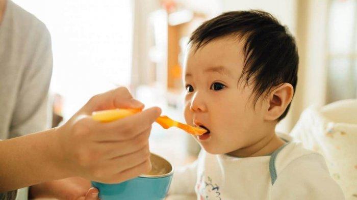 Hasil Penelitian, Mayoritas Makanan Bayi Instan di Pasaran Mengandung Bahan Kimia Beracun
