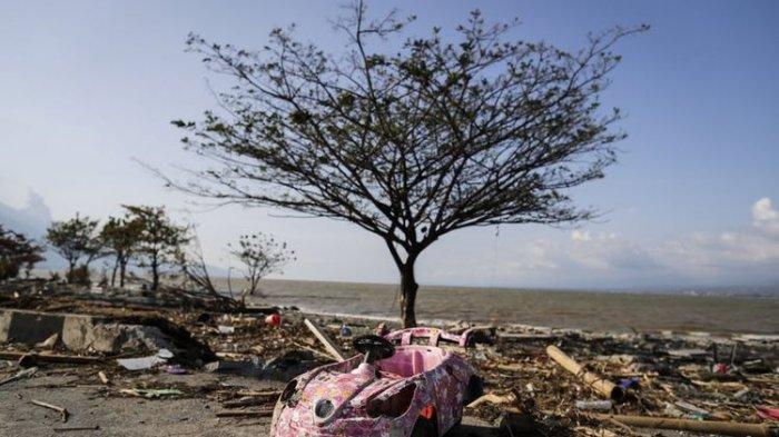 Mengapa Peneliti Menganggap Gempa Bumi Tahun 2010 di Mentawai Sebagai Fenomena Langka?