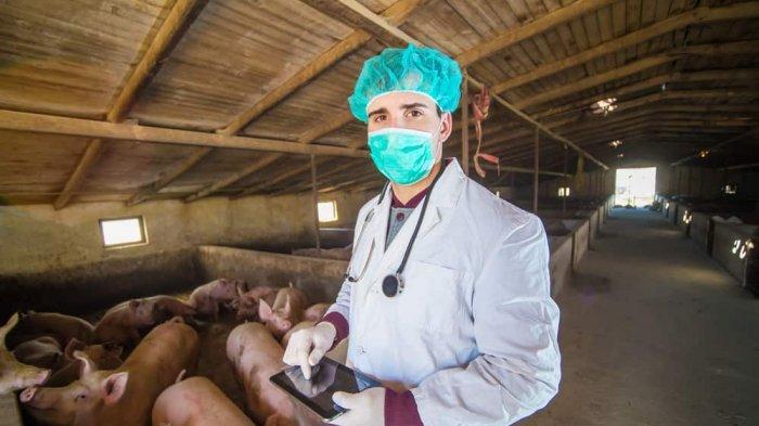 Perbedaan Flu Babi dan Novel Coronavirus, Lebih Banyak Kemiripannya