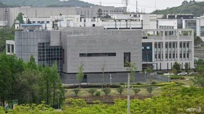 Didesak Banyak Negara, China Akhirnya Izinkan Penyelidikan Virus Corona, Syaratnya WHO Hadir