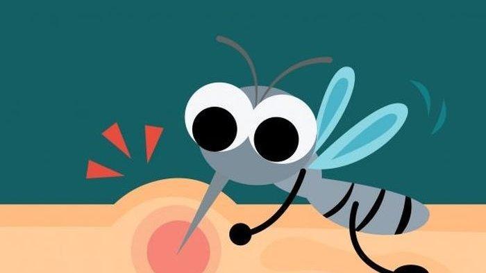 Nyamuk Juga Pilih-pilih, Tak Semua Orang Digigit