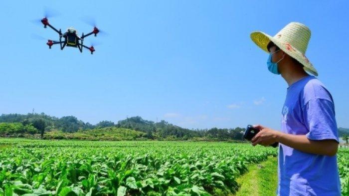 Pilot Pesawat Tanpa Awak, Kini Jadi Profesi Baru Bidang Pertanian di China