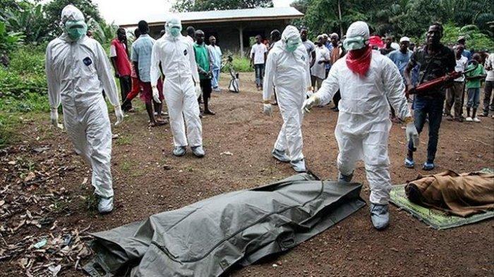 Selain Virus Corona dan Flu Babi Jenis Baru, WHO Juga Temukan Kemunculan Virus Ebola di Afrika