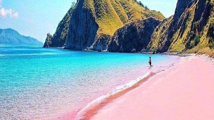 Mengapa Pasir Pantai di NTT Bisa Berwarna Pink?