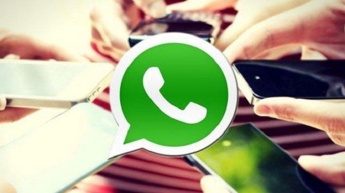 Ini Cara Mudah Tolak atau Terima Masuk Grup WhatsApp, Ikuti Langkah-langkahnya