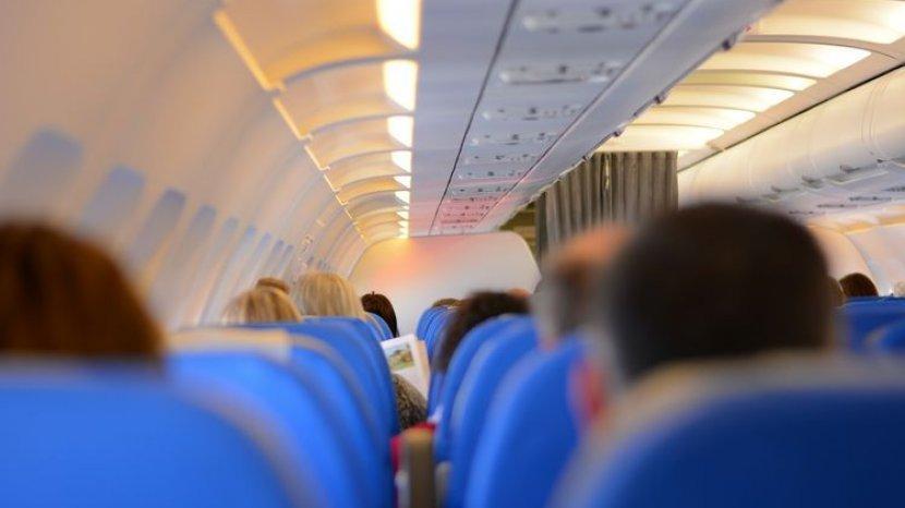 Ada Alasan Mengapa Kursi Pesawat Berawarna Biru, Ini Penjelasnnya
