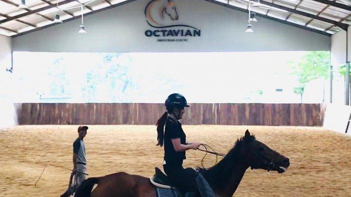Wisata Berkuda diOctavian Equestrian Centre, Kuda Poni hingga Andalusia