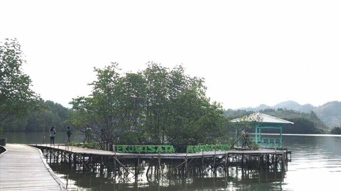 Lokasi Ekowisata Mangrove Petengoran, Dekat Kota Bandar Lampung