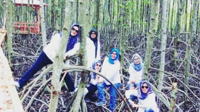 Bertualang di Ekowisata Mangrove Petengoran