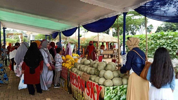 Dukung Program Petani Berjaya, Unila Resmikan Kebun Agrowisata Melon