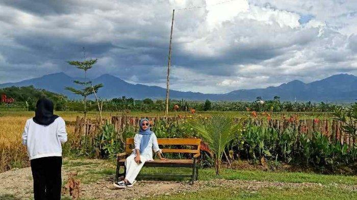 Agrowisata BMJ, Wisata Hits di Pringsewu