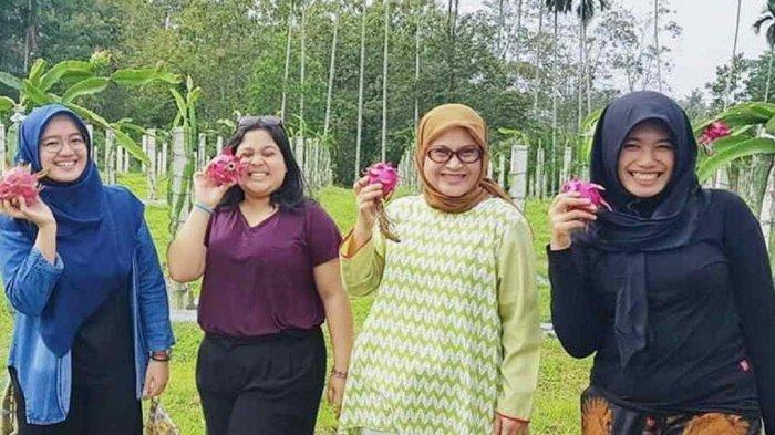 Lokasi Agrowisata Sabina Lumbung Persada, 30 Menit dari Kota Bandar Lampung