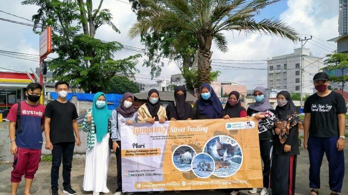 Profil Lampung Street Feeding, Komunitas Peduli Kucing di Bandar Lampung