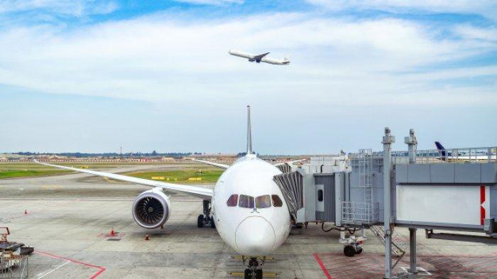 Satu Tahun Covid-19 Berjalan, Travel Bubble Diberlakukan di Bandara Selandia Baru dan Australia