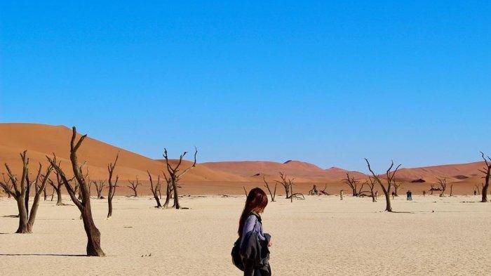 Ini Fakta Unik Deadvlei, Rawa Mati yang Dikelilingi Bukit Pasir di Gurun Namibia