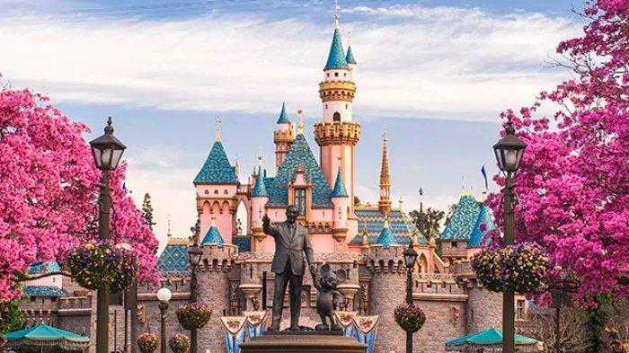 Nekat Masuk Area Disneyland Ditengah Pandemi Corona, Pria Ini Terancam Hukuman Penjara