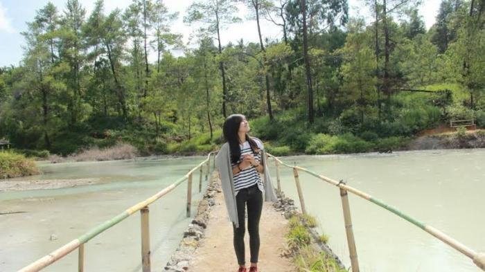 Tanah Putih, Itulah Hutan Pinus Lahendong