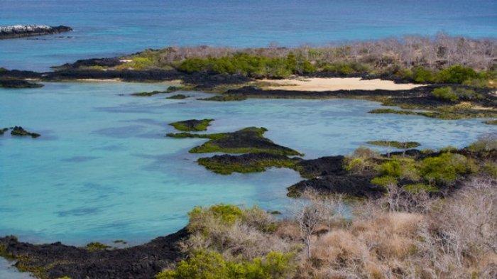 Ekuador dan Galapagos Terima Wisatawan yang Sudah Vaksin Covid-19