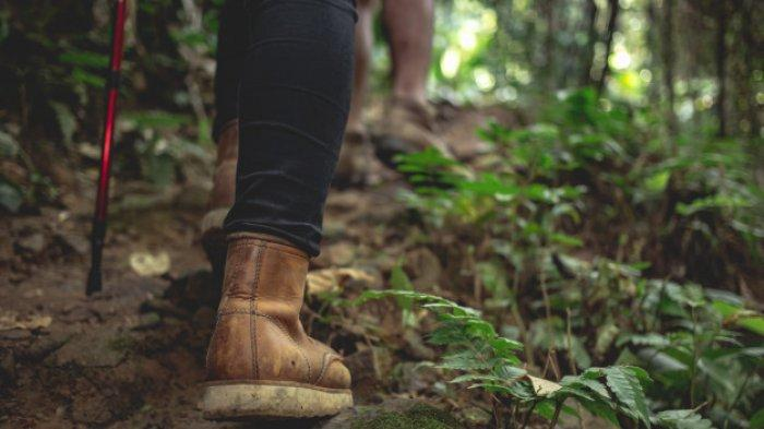 Ingin Mendaki Gunung di Musim Hujan? Perhatikan 7 Hal Berikut