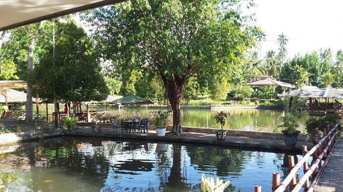 Puas Makan Ikan Mas di Restoran Pondok Hijau Manado