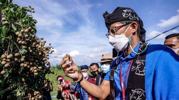 Tidak Boleh Mudik, Sandiaga Uno Imbau Masyarakat Kunjungi Destinasi Wisata Lokal