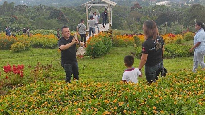 Menikmati Taman Bunga Pelangi di Tomohon Sulawesi Utara, Destinasi Wisata di Kaki Gunung Lokon