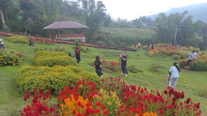 Yuk Berkunjung ke Taman Bunga Pelangi Tomohon, Bagai Sepenggal Surga di Kaki Gunung Lokon