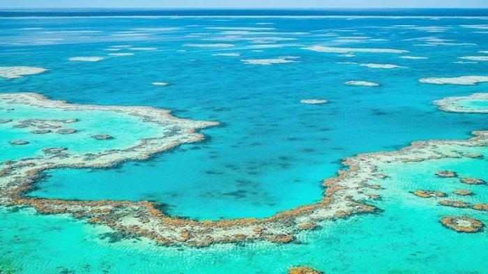 The Great Barrier Reef, Gugusan Karang yang Dapat Terlihat hingga Ruang Angkasa Terancam Hancur