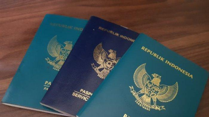 IATA Rancang Program Travel Pass untuk Pelancong, Apa Saja Keuntungannya?