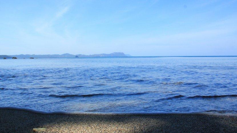 Yuk Ke Pantai Batu Putih Melihat Tarsius dan Menikmati Air Laut Sebening Kristal